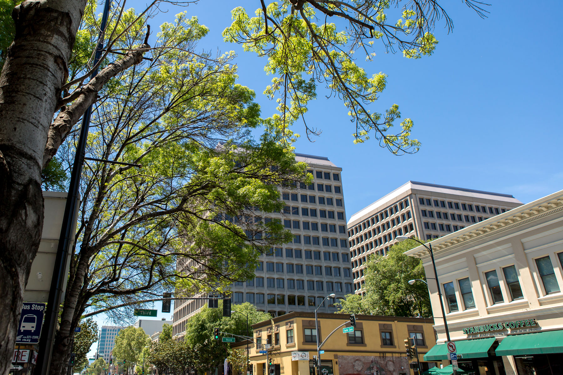 san jose convention and visitors bureau