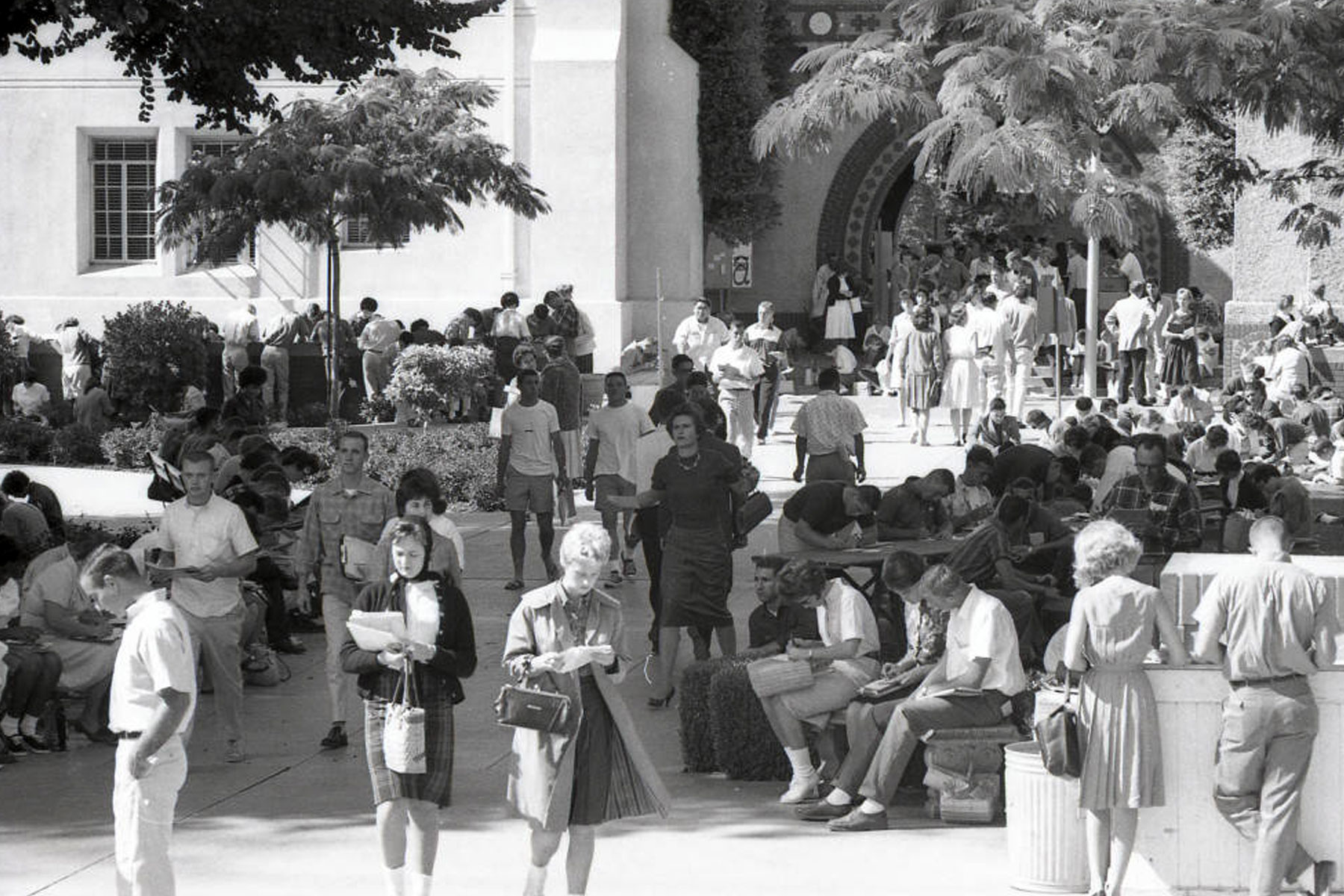 SJSU students gathered in the quad.