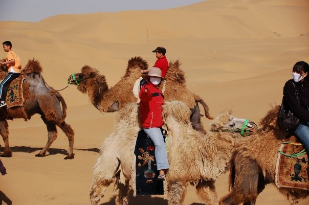 Woman on Camel, Inner Mongolia