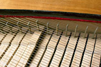 Photograph of clavichord tangents