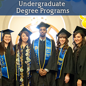Our Undergrad Degree Programs