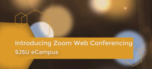 Zoom web conference video logo