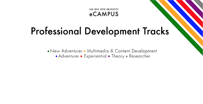 Professional Development tracks