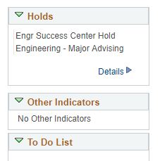 "Screenshot of ""holds"" section of a student's account."