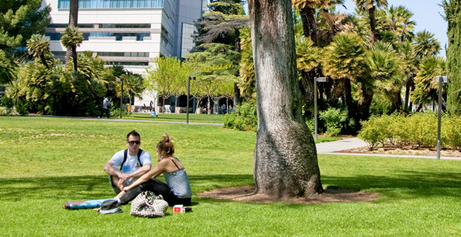 Students enjoy the sun while relaxing on campus lawns