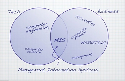 Figure showing MIS as overlap of Technology and Business