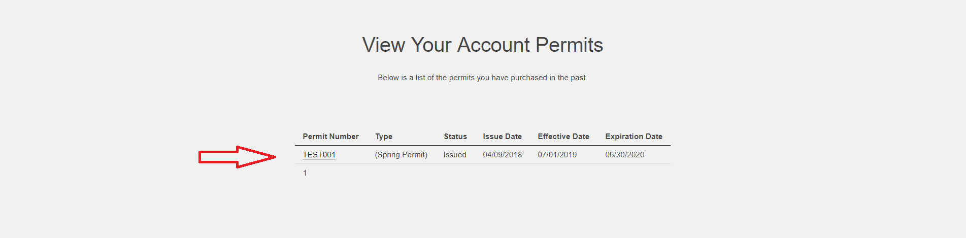 view your permit detail