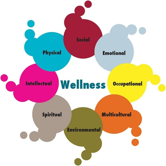 Wellness, Social, Emotional, Occupational, Multicultural, Environmental, Spiritual, Intellectual, Physical