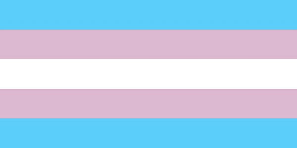 Transgender Flag - Blue Stripe, Pink Stripe, White Stripe, Pink Stripe, Blue Stripe