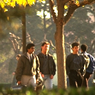 Male Students Passing Tree-Lined Walkway