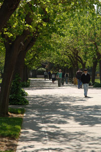 Students Walking on Campus Walkway