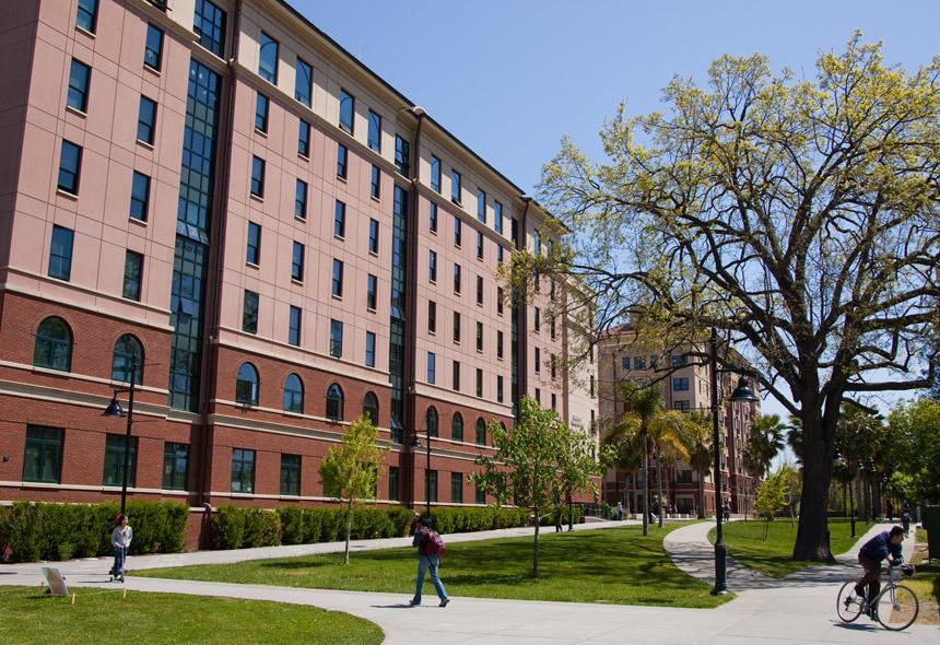 University of san francisco essay