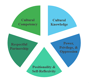 Graphic of the Transcultural Perspective