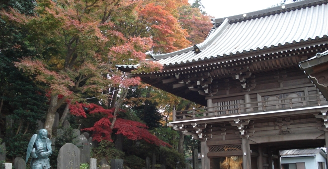Japanese Temple in Fall